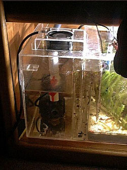 Marc levenson melev uses an ac fan directed at the water for Fish tank water cooler
