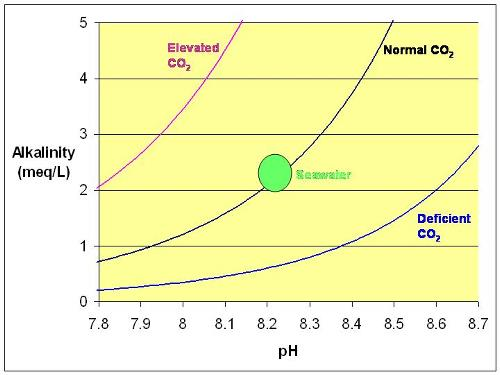 how to raise alkalinity in saltwater pool