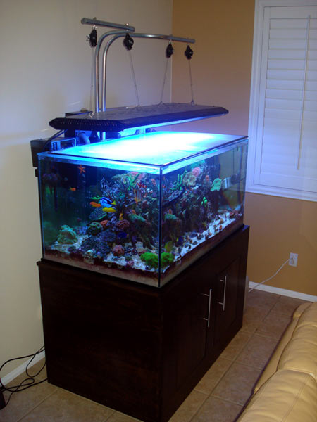 Diy An Inexpensive Light Hanger Kit Reefkeeping Com