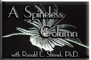 A Spineless Column by Ronald L. Shimek, Ph.D.