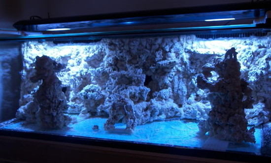 Tags : Aquascaping , DoItYourself , ReefCentralThreads