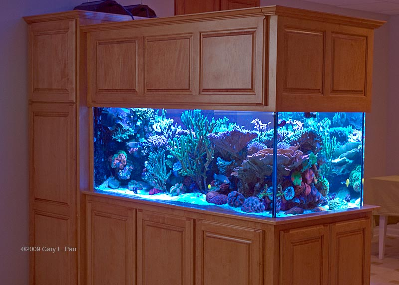 Highslide JS & Reefkeeping Magazine - Tank of the Month