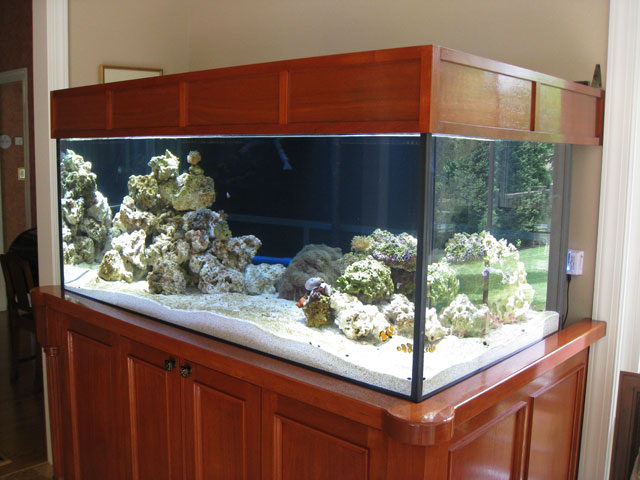 Reefkeeping magazine building an aquarium stand for Fish tank top cover
